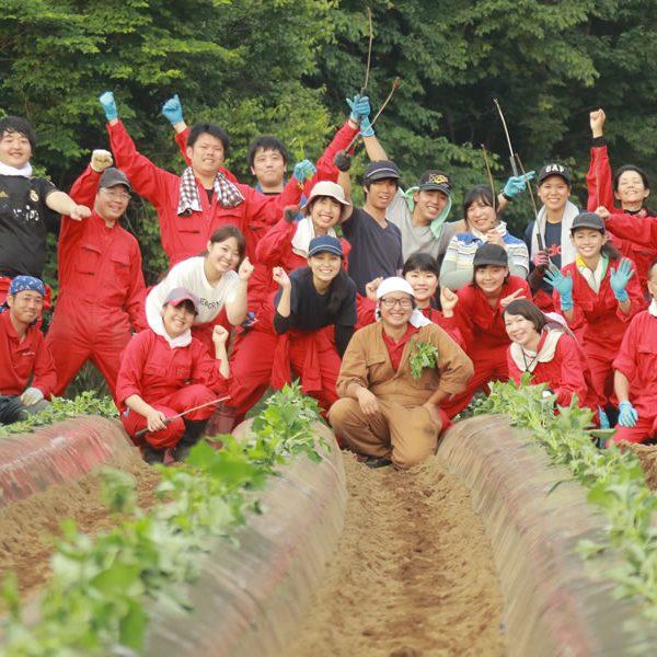福島農作業